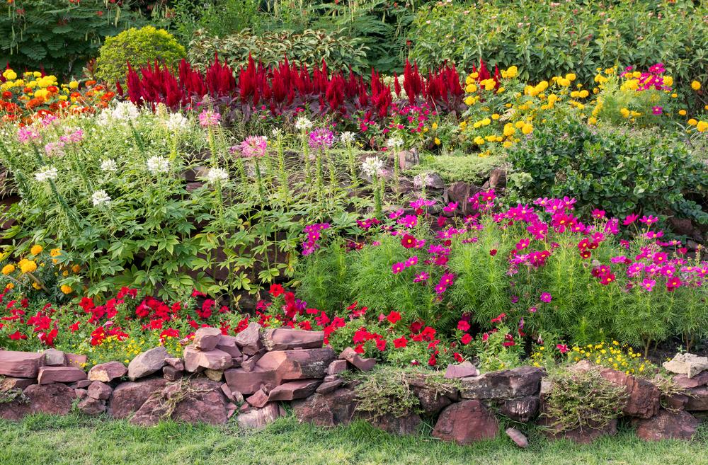 Quelles fleurs pour quelle saison ?